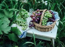 草地上新鲜的葡萄图片欣赏