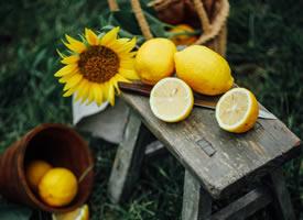 黄色的向日葵做搭配的柠檬拍摄图