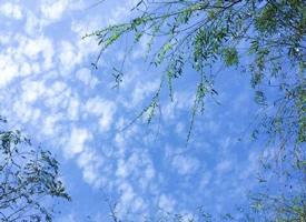 一組藍天白云的的美好風景壁紙欣賞