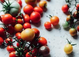 一组小小的红红的番茄图片欣赏