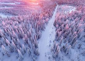 洁白的雪花纷纷扬扬地洒落到地面,形成银白色的一片光泽