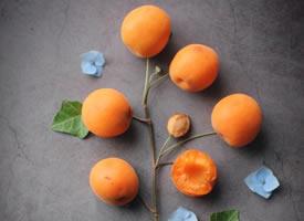 六月里,杏子熟透了,它的形状、颜色和滋味,都非常惹人喜爱