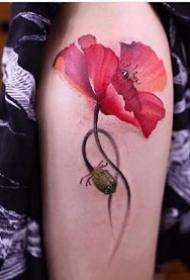 罂粟刺青:艳丽的一组红色罂粟花纹身图案