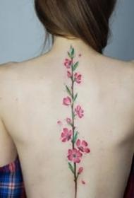 女生后背部脊椎處唯美的小清新紋身圖