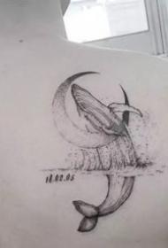 很漂亮的一組鯨魚紋身作品圖片欣賞