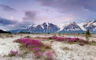 美國阿拉斯加風景圖片_13張