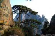 安徽黃山風景圖片_167張