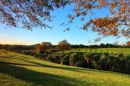 新西兰奥克兰秋色风景图片 _10张