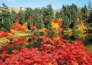 北海道秋季景色圖片_10張