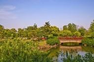 上海滨江森林公园风景图片_5张