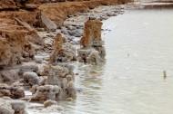青海察尔汗盐湖的盐花图片_20张
