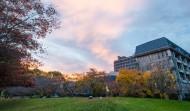 新西兰坎特伯雷大学风景图片_8张