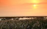 天津大港湿地公园夕阳风景图片_9张