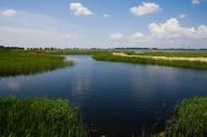 东北齐齐哈尔扎龙自然保护区图片_15张