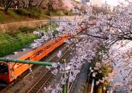 东京城市图片_30张