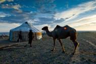 新疆阿勒泰哈萨克牧民夏季大迁徙图片_23张