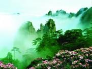 黃山云海圖片_30張