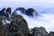 安徽黄山风景图片_18张