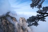 安徽黃山雪景樹掛圖片_12張