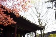 江苏苏州图片_35张