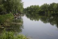 江湾湿地风景图片_6张