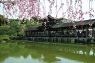 日本京都風景圖片_21張