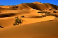 内蒙古库布齐沙漠风景图片_32张