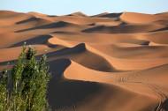 新疆库木塔格沙漠风景图片_11张