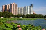 北京莲花池公园图片_6张