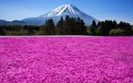 日本富士山风景图片_9张