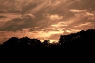 安徽黄山风景图片_13张