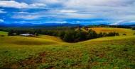 澳大利亚墨尔本郊外农场风景图片_14张