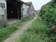 廣東從化錢崗村風景圖片_18張