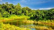 尼泊尔奇特旺皇家公园风景图片_10张