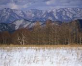 日本冬景图片_25张