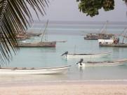 烟台桑岛海豚湾的早晨风光图片_10张