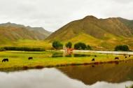甘肅甘南桑科草原風景圖片_14張