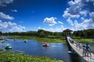 山东胶州湿地公园风景图片_10张
