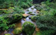 贵州赤水四洞沟风景图片_20张