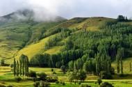 土耳其绿色山脉风景图片_9张