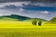 乌兰布统的夏季风景图片_13张