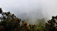 海南五指山原始森林風景圖片_16張