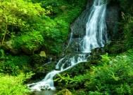 贵州香火岩的溪水风景图片_10张