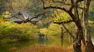 廣西桂林逍遙湖風景圖片_10張
