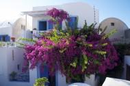 希臘風景圖片_12張