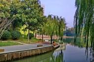 上海新金桥公园风景图片_9张