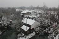 浙江杭州西溪湿地冬季风景图片_11张