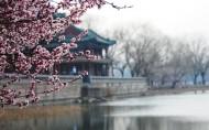 北京颐和园风景图片_20张