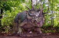 恐龍模型和恐龍化石圖片_12張