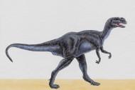 手繪恐龍圖片_25張